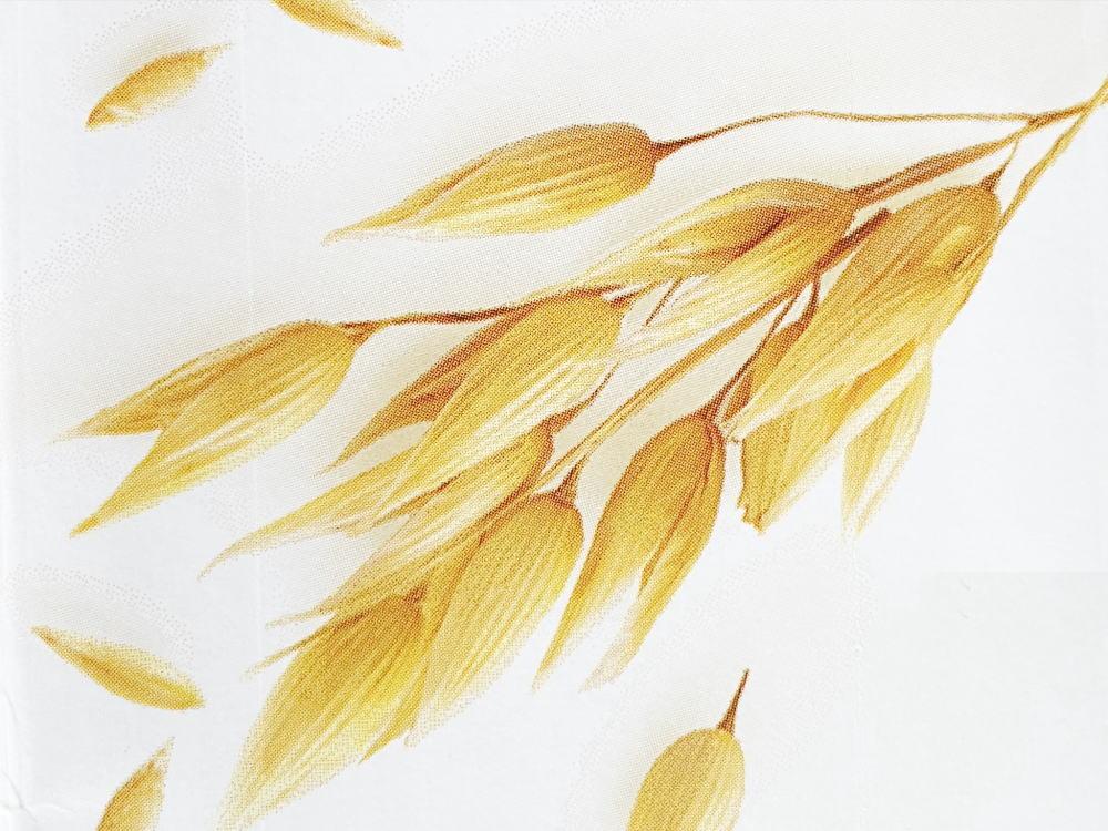 オーツ麦 燕麦