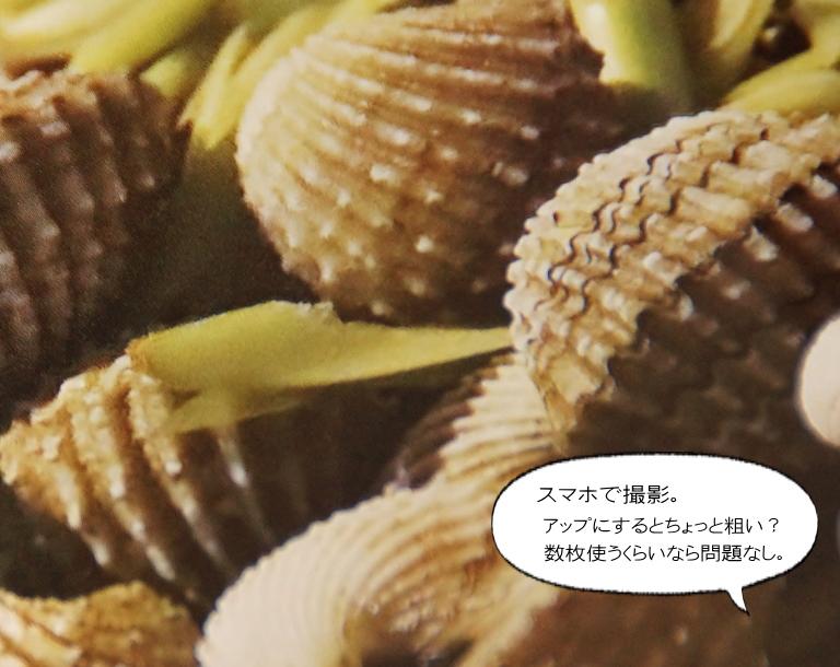 アスカネット アルバム 口コミ ブログ