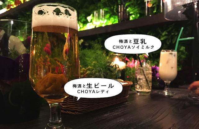 梅酒 豆乳 生ビール