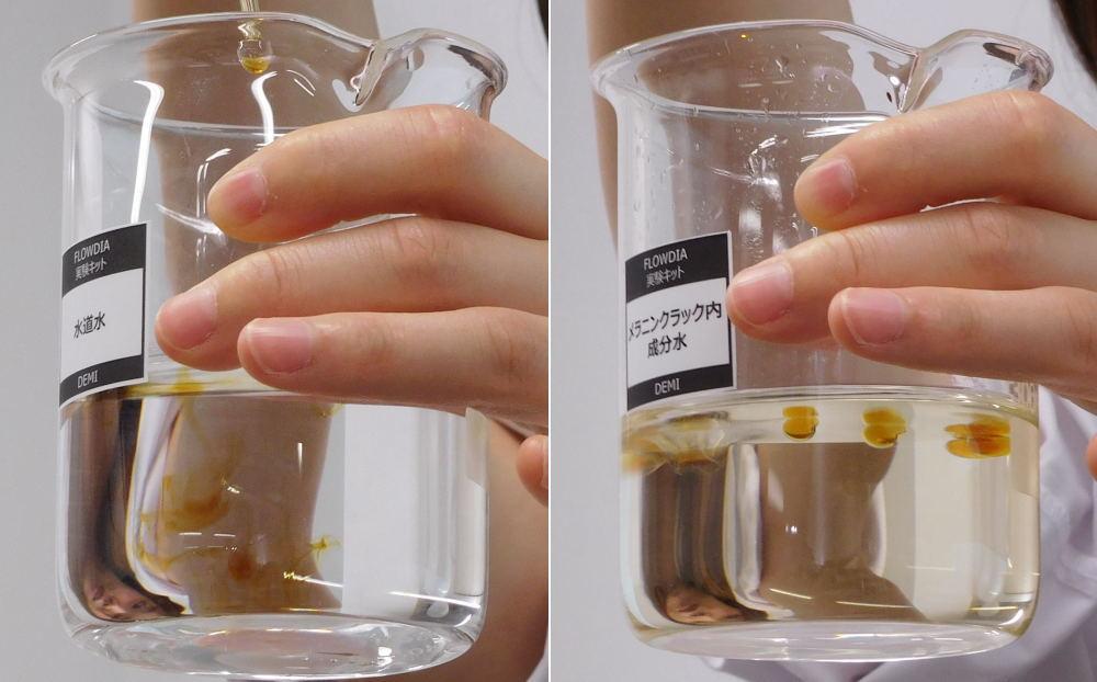 メラニンクラック内成分液