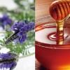 オーガニック化粧水 原材料 ハチミツ ネロリ バラ ラベンダー