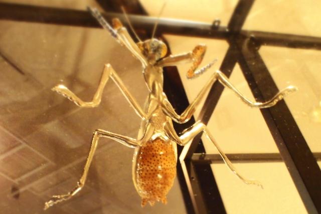 九谷焼 昆虫フィギア
