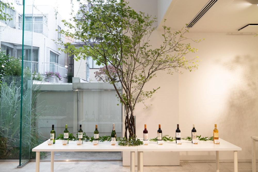 ボルドーの持続可能なワイン造りを知る #Sustainabordeaux プレスイベント