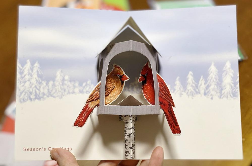 MOMA シーズングリーティング 鳥かご
