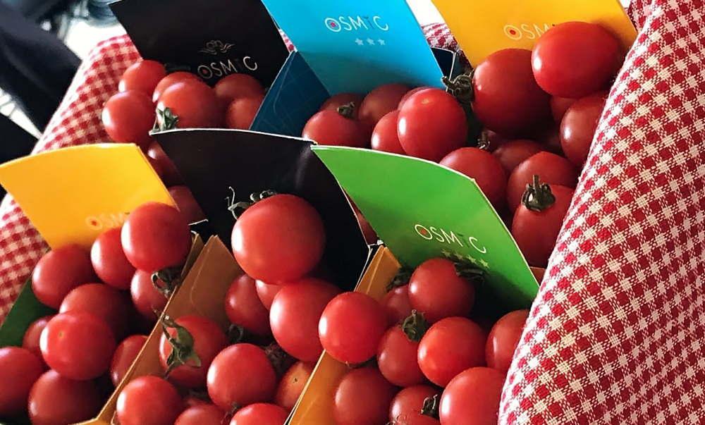 OSMIC トマト