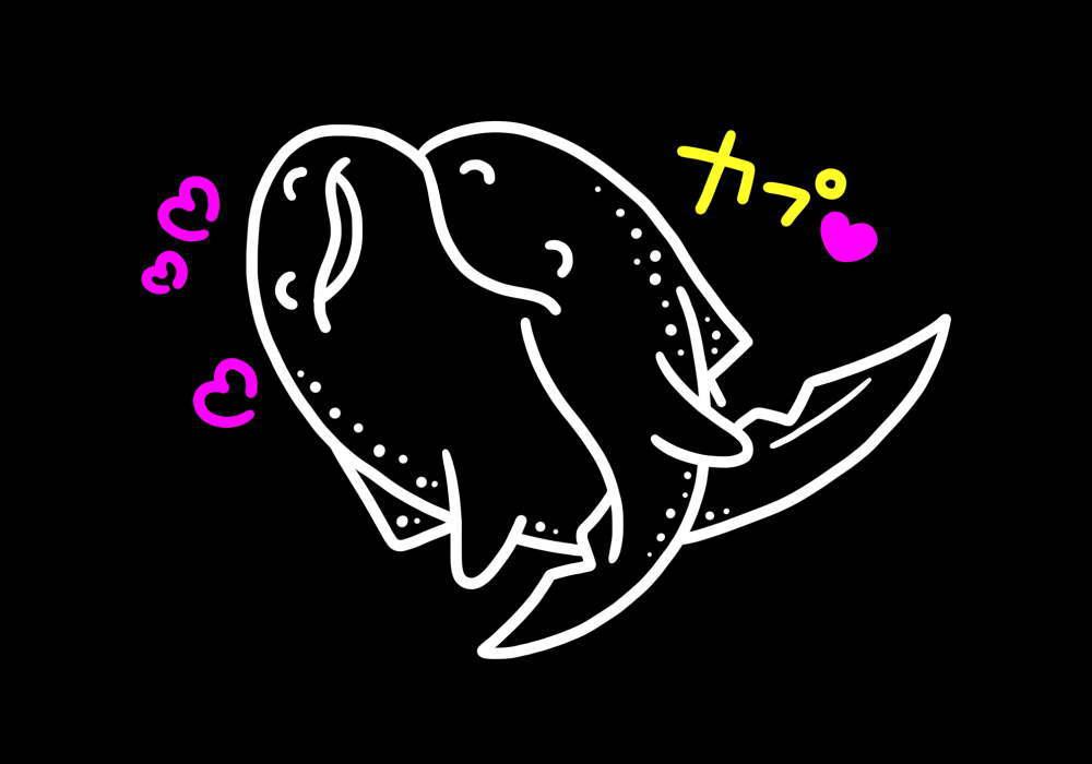 トラフザメの交尾