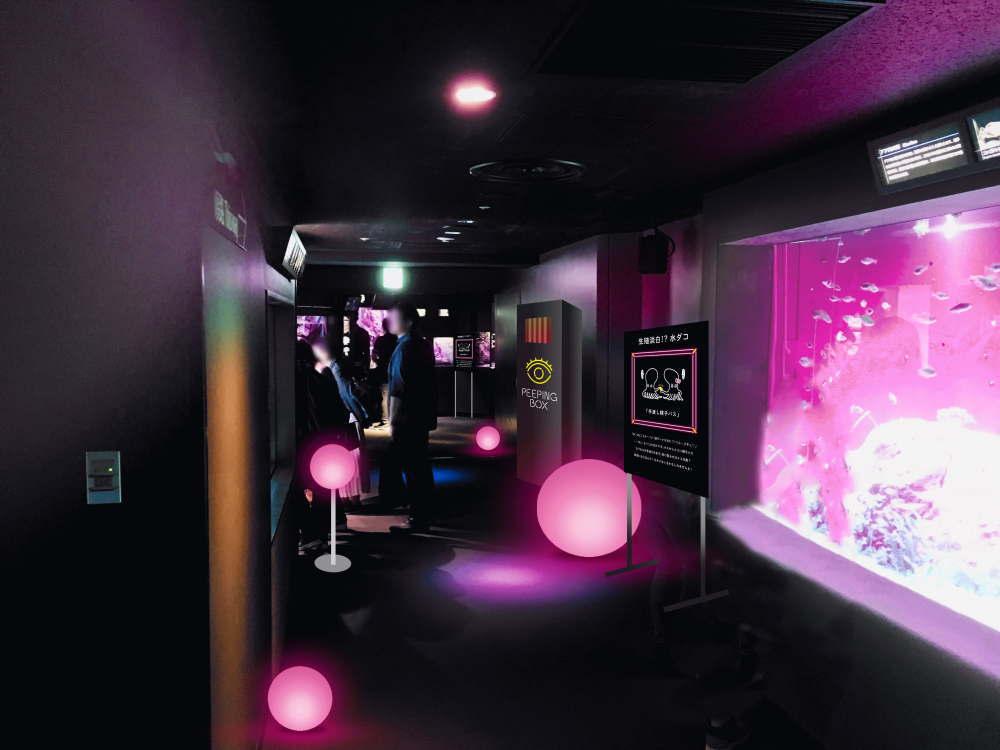 性いっぱい展 ピンクのネオンの水槽