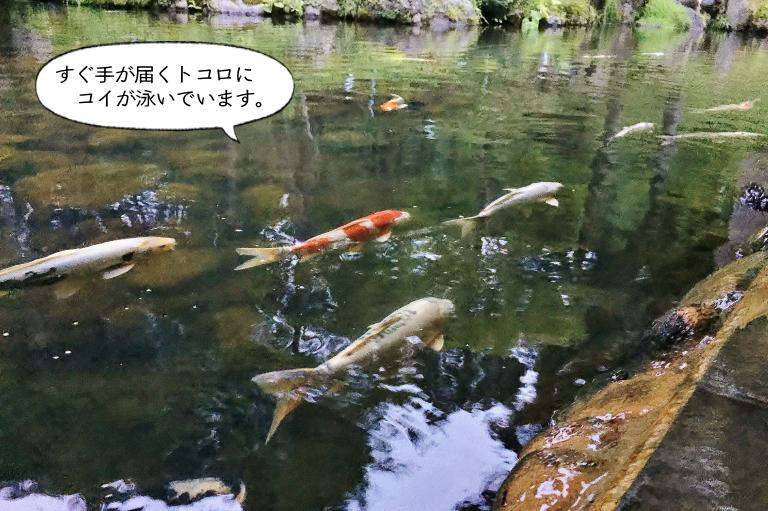雫石 温泉