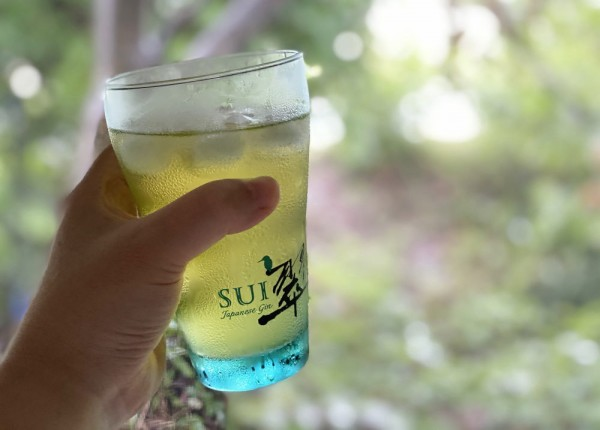 ジントニック 緑茶割