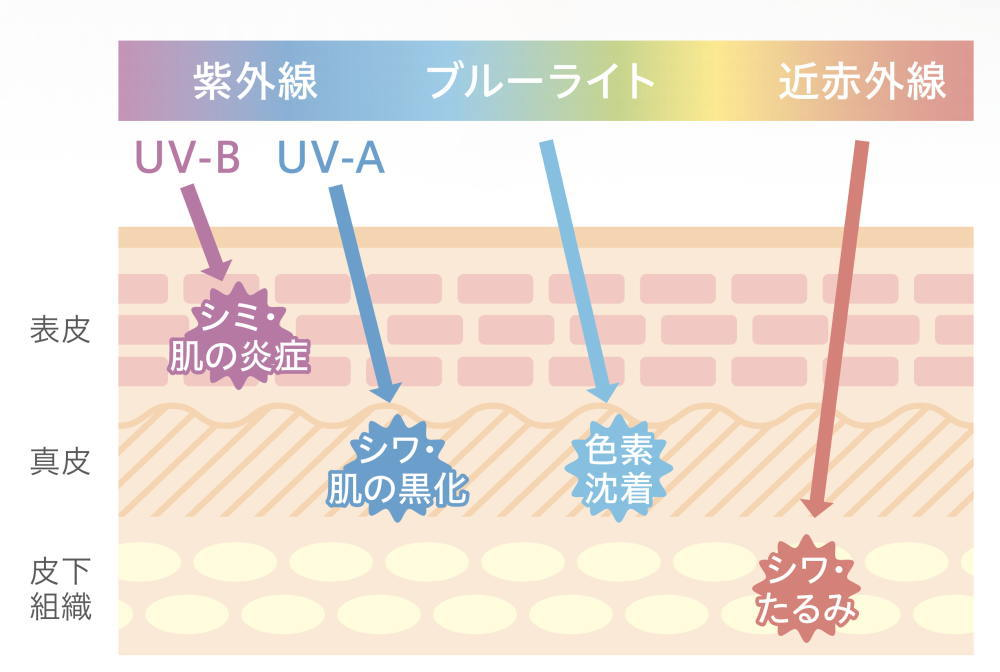 比べコスメUV美容下地の特徴