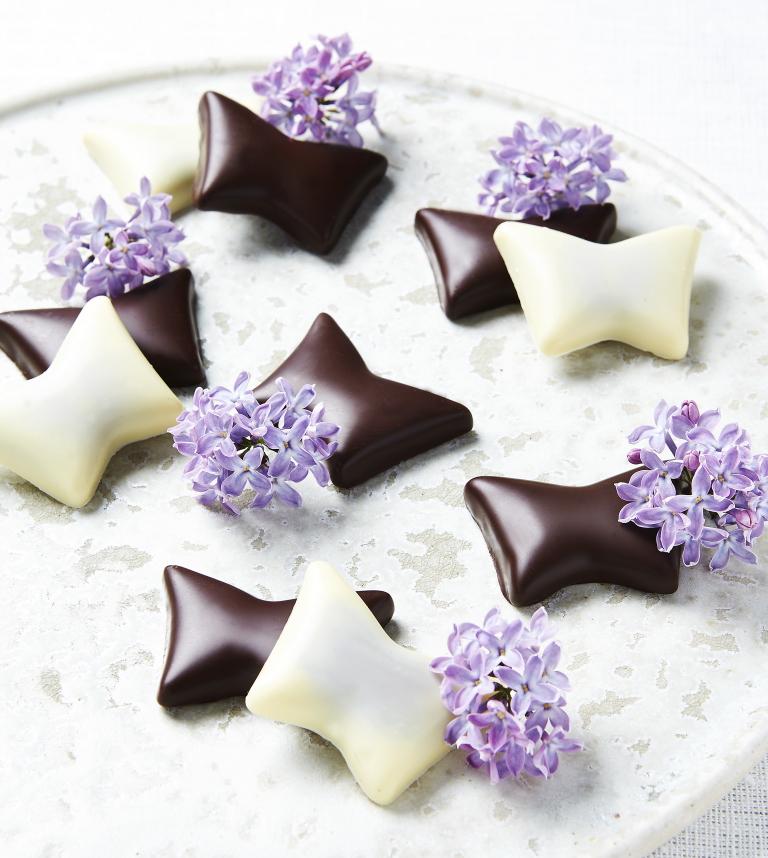 サマーバード 蝶々のチョコレート